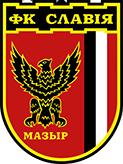 Славия (Мозырь)