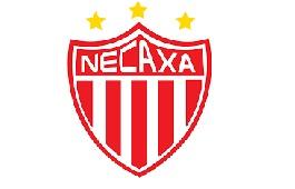 Некакса (Агуаскальентес)
